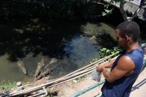caimanes-insolito-obstaculo-conseguir-agua-favela-rio_2_2208821